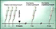 Солкотриховак